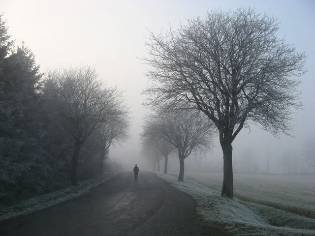 person walking along a road surrounded by bare trees and frost field